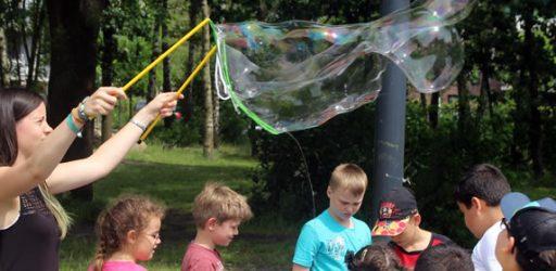 Zahlreiche Besucher auf dem Sommerfest des BGZ Süderelbe